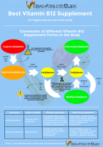 Conversion of Vitamin B12 Supplement Forms in the Body